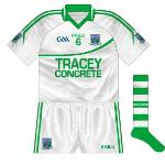2013: As usual, Fermanagh wore white against Meath in the league, with the shirt an exact reversal of the green top.
